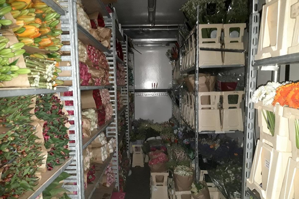 Rikollisryhmä salakuljetti jättimäärän huumeita kukkien seassa Suomeen – katukauppa-arvo 20 miljoonaa euroa 12